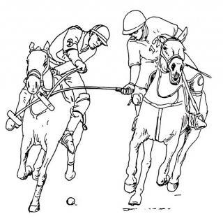 Polospieler - Illustration von Jon Mincu, Fine-Press-Atelier, Berlin - Künstler, Illustrator, Zeichner, Maler für Kunst, Wissenschaft, Belletristik und Kinderbücher